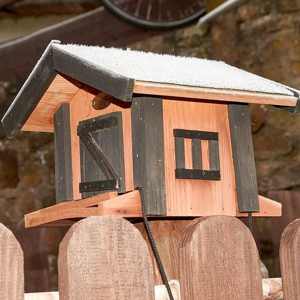 fence topper bird feeder, brooksville fl