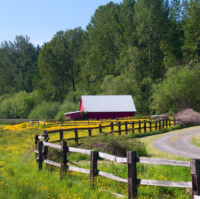 split rail fence, sugarmill fl